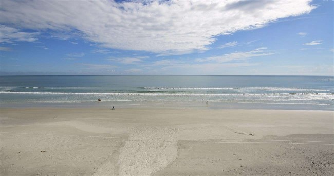 New Smyrna Beach Sea Coast Gardens II 504.29